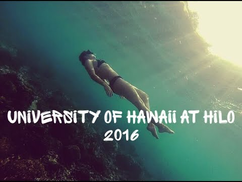 University of Hawaii at Hilo, First Semester 2016