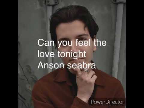 Can you feel the love tonight-Anson Seabra cover-lyrics