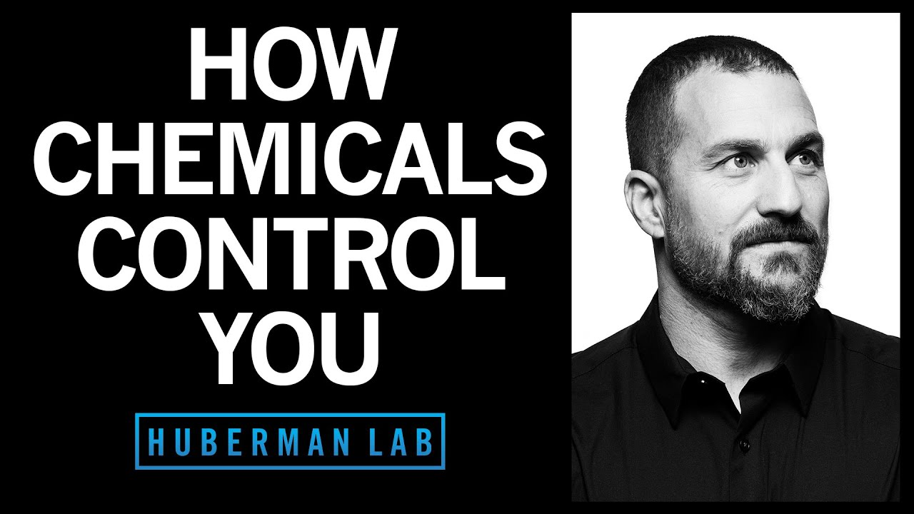 How Smell, Taste & Pheromone-Like Chemicals Control You | Huberman Lab Podcast #25