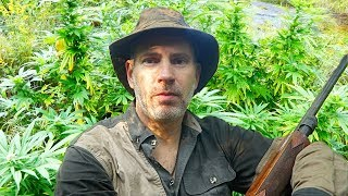Cannabis Legalization, Weed in the Wilderness