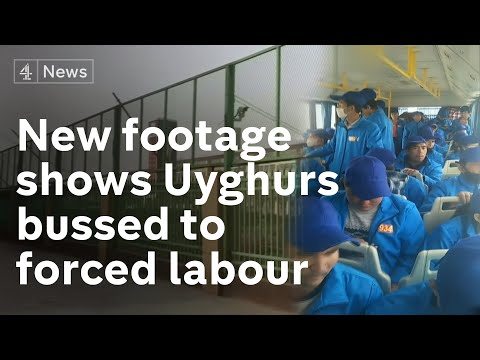 New footage shows Uyghurs bussed across China for forced labour in factories