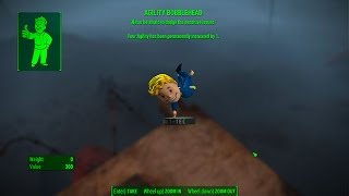 Agility Bobblehead - Wreck of the FMS Northern Star - Fallout 4
