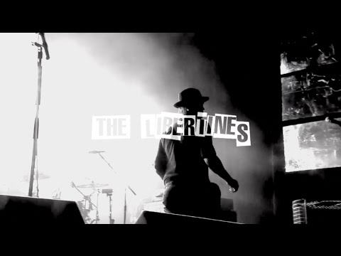 The Libertines - Death on the Stairs (lyric video)