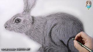 Как нарисовать зайца. Поэтапный урок.