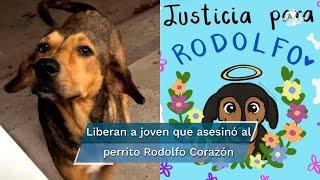 """José """"N"""", acusado de asesinar con un hacha al perrito Rodolfo Corazón fue puesto en libertad provisional; la novia de José """"N"""" pide que cese el linchamiento en redes sociales"""