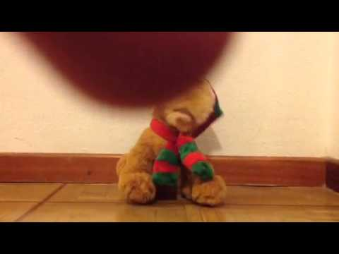 animated musical christmas dog