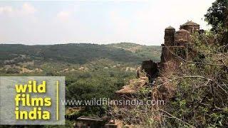View of Ranthambhore Fort - Sawai Madhopur, Rajasthan