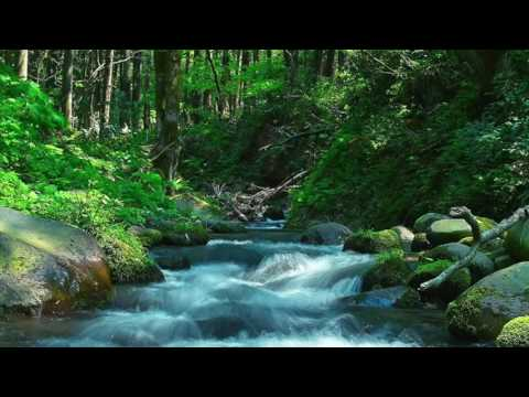 この河を越えて (kino Kawa O Koete) :  Across This River