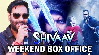 Ajay Devgn REACTS To Shivaay Box Office, Shivaay WEEKEND Collection