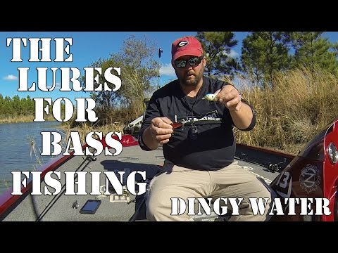 What Lures to Use in Dingy or Stained Water -  Bass Fishing