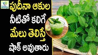 Health Benefits Of Mint Leaves - Health Tips in Telugu    mana Arogyam