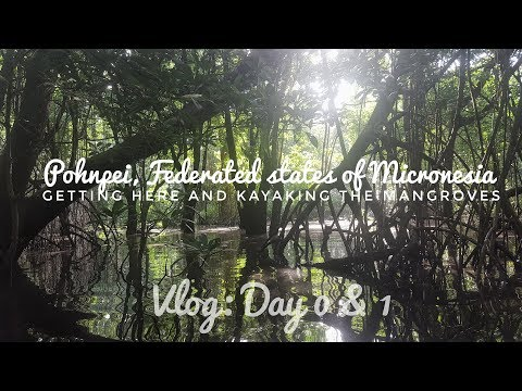 Getting to Pohnpei, Micronesia & Kayaking The Mangroves | Vlog Day 1