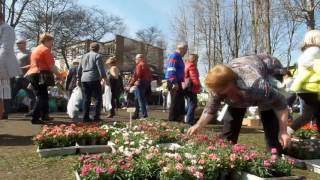 Targi ogrodnicze w Słupsku