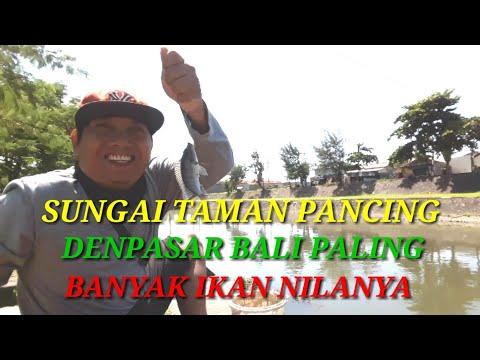 Sungai Taman Pancing Spot Mancing Paling Terkenal Di Denpasar Bali