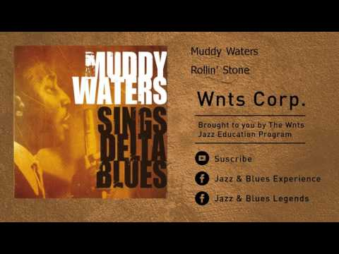 Muddy Waters - Rollin