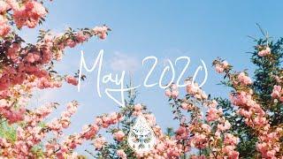 Baixar Indie/Pop/Folk Compilation - May 2020 (1½-Hour Playlist)