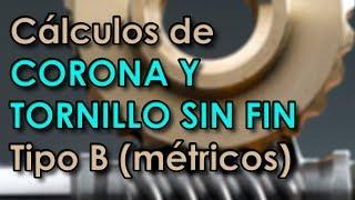 Cálculos de Corona y Tornillo Sin Fin Métricos Tipo B