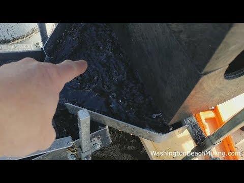 Best Beach Mining Gold Setup