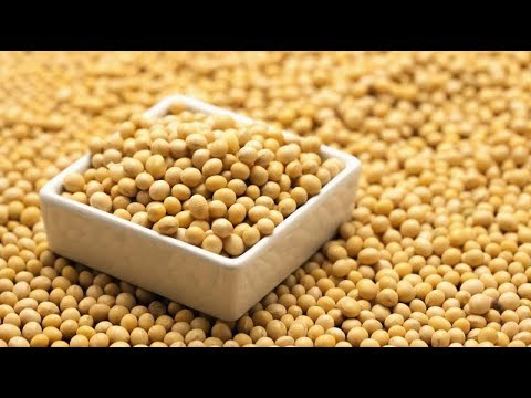 Why Does China Import So Many Soybeans?