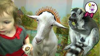 Контактный зоопарк в Москве. Видео про животных для детей Дикие и домашние животные и их детёныши