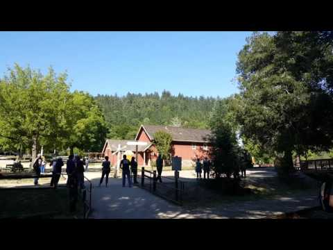 Roaring Camp, Big Trees and Pacific Railroad Station