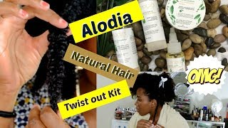 Natural Hair Regimen With Alodia Hair Care Living With Shea Youtube