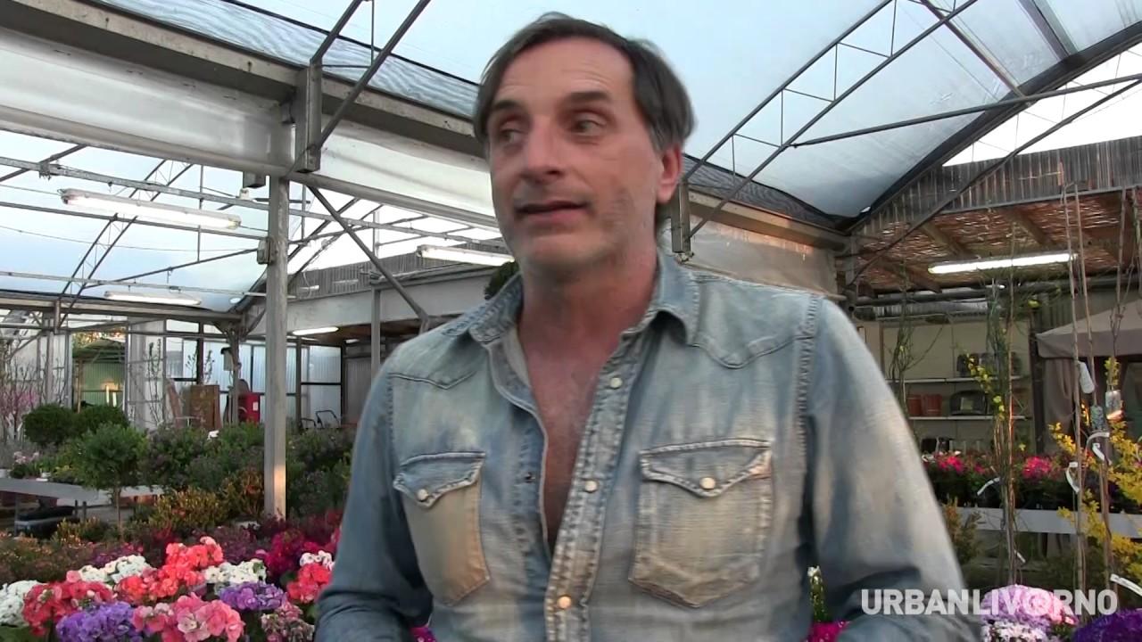 Intervista A Ghiomelli Il Futuro Del Negozio Storico Di Livorno