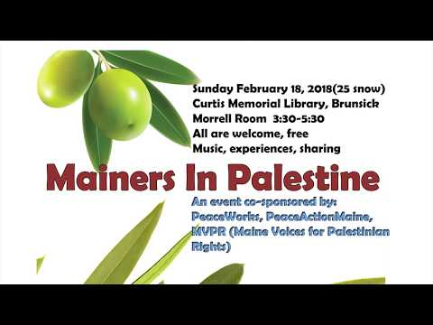 Mainers in Palestine, Part One. Olive Picking Harvest,  809