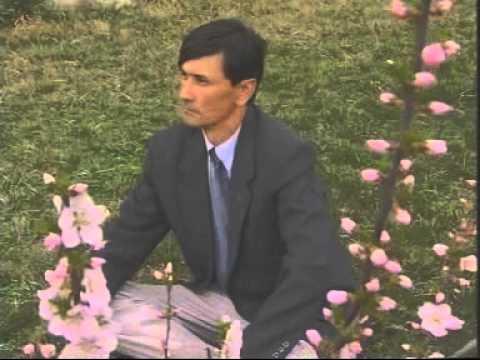 Terak Bostan ; Ablekem Gettar ; Uyghur