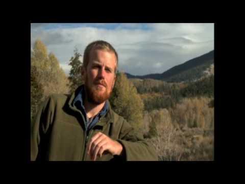 cddd000106 ... boulder-international-film-festival Boulder ...