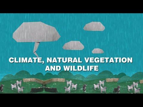 Climate, Natural Vegetation and Wildlife. CBSE/NCERT