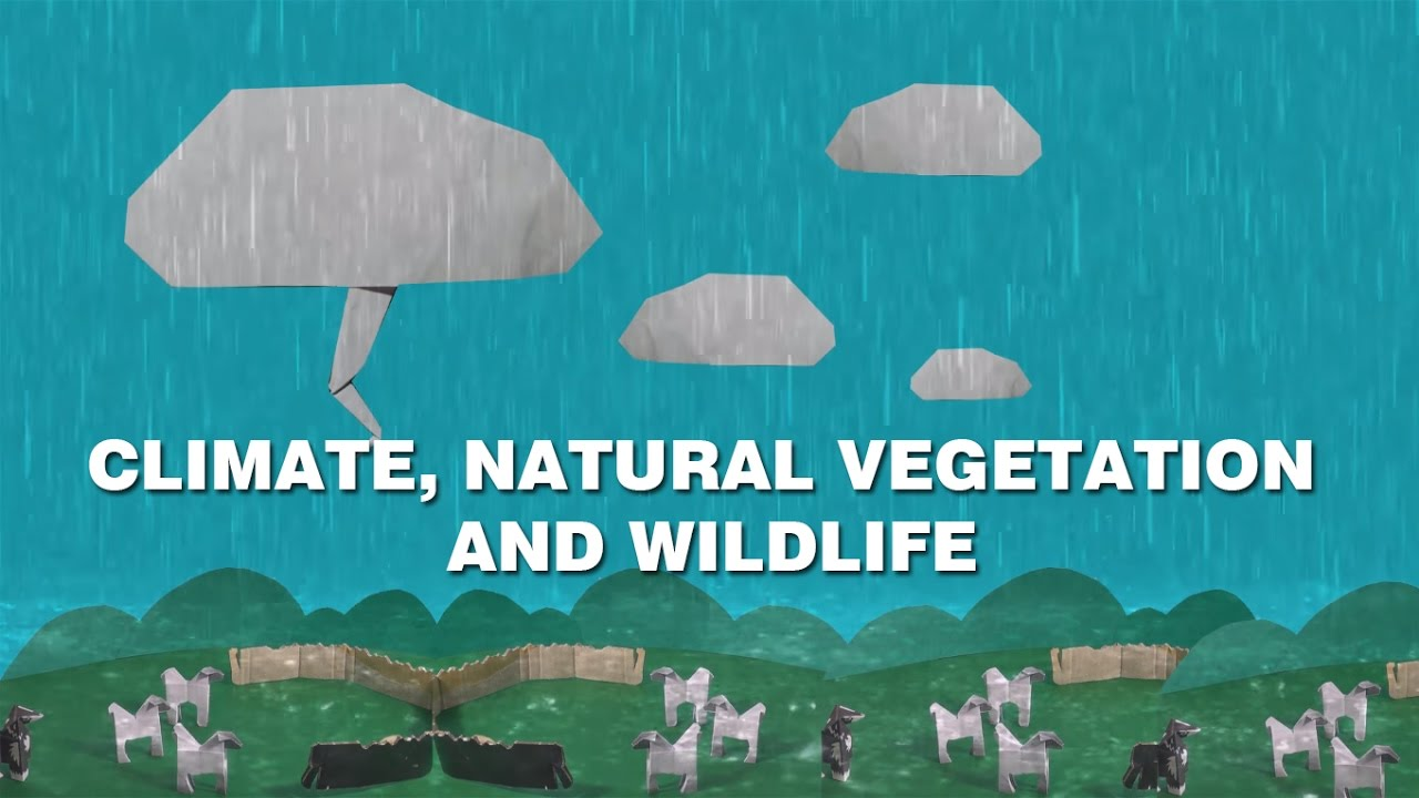 Climate Natural Vegetation And Wildlife Cbse Ncert Youtube
