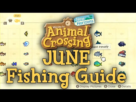JUNE Fishing Guide - How To Catch All Fish | Animal Crossing: New Horizons