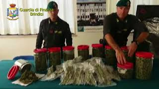 Custodiva 5,5,Kg. di marijuana: arrestato dalla Guardia di Finanza