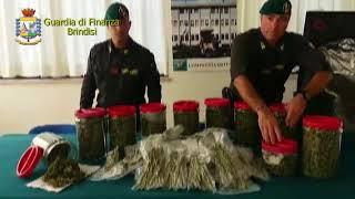 Custodiva 5,5,Kg. di marijuana: arrestato dalla Guardia di Finanza