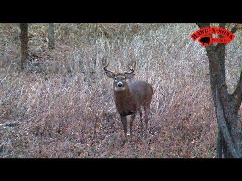 November 5 – 8 BEST Self-Filmed Illinois Deer Hunt Ever – Hunting Rutting Whitetail Bucks