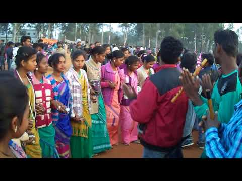 Sohrai Dance (दिसाेम सोहराय पोरोब 2018 ) at SP College Dumka 2018 HD