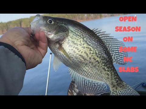 JORDAN LAKE, NC CRAPPIE FISHING