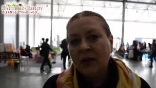 Элитные-Чаи.ру: отзывы о чаях
