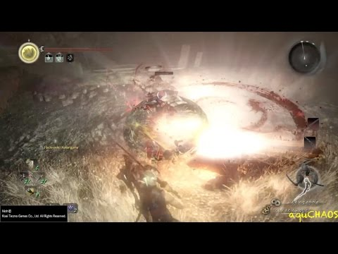 Nioh GMV: Severe Tire Damage (aka: Conquer NG+ ACT5 at Lv99!)