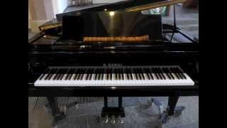 Schumann: Träumerei op.15 No.7 for shakuhachi & piano