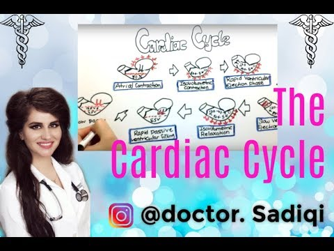 The Cardiac Cycle Made Ridiculously Easy