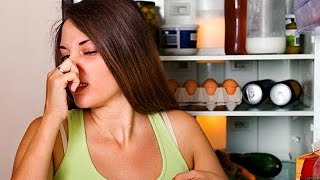 Как избавиться от запаха в холодильнике  (метод №2 )| #edblack(, 2015-03-31T15:00:04.000Z)
