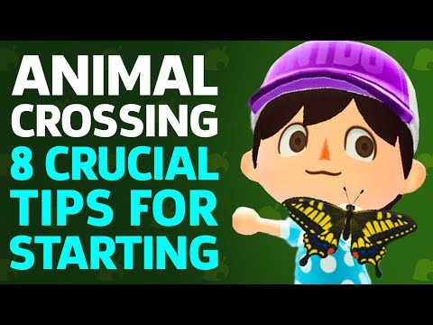 8 Crucial Tips For Starting Animal Crossing: New Horizons