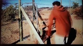 111 Verrückte Viecher - Die witzigsten Tiere der Welt   Trailer August   Sat 1