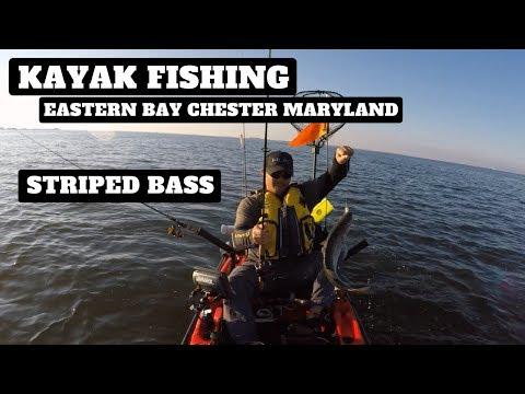 Kayak Fishing In Maryland The Eastern Bay