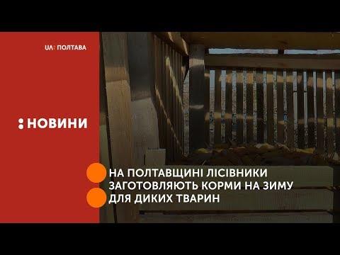 UA: Полтава: На Полтавщині лісівники заготовляють корми на зиму для диких тварин
