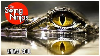 The Swing Ninjas - Animal Soul (Official Lyric Video) Brighton via New Orleans Jazz