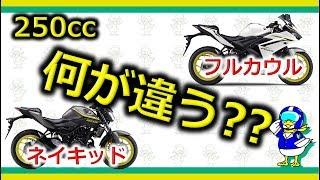 【バイク】国内250ccネイキッドとスポーツの違いって?