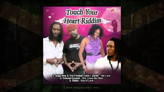 Various Artists - Touch Your Heart Riddim (Mix by DJ Skuff) Fire Ball Records - November 2014
